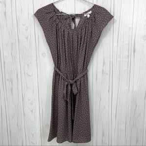 LAUREN CONRAD NWT SPRING DRESS SIZE SMALL